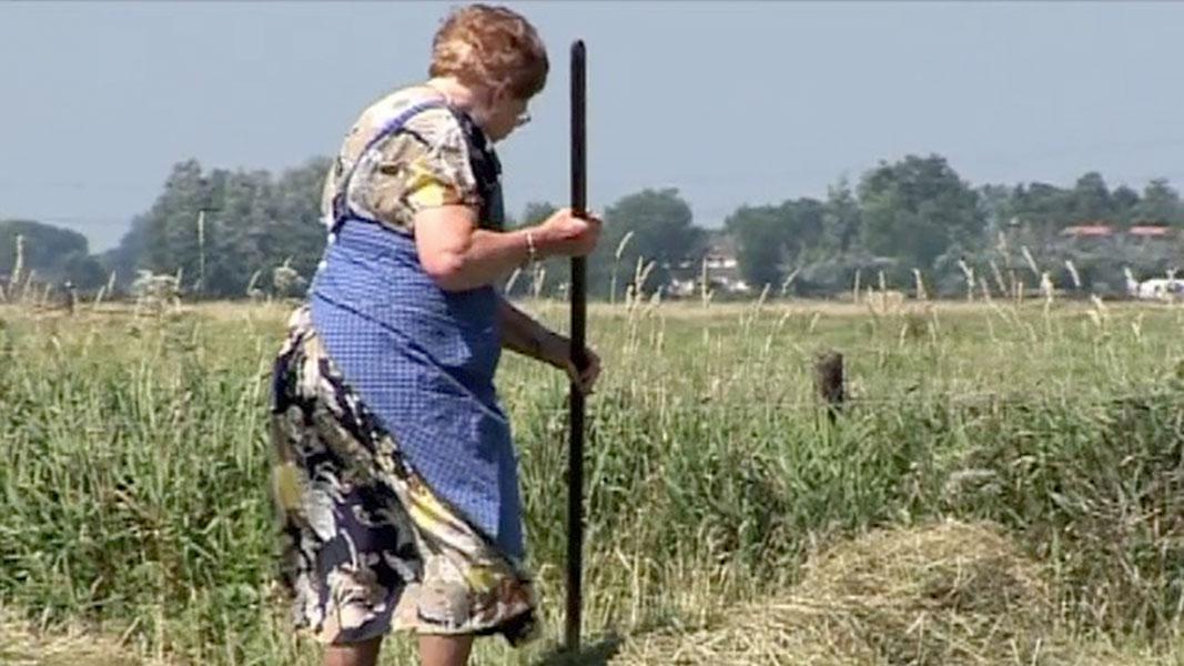 Boer'n-Wiesheid-2-Documentaire-Olaf-Koelewijn
